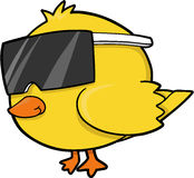 Cool Chick Vector. Cool Yellow Chick Vector Illustration Royalty Free Stock Image