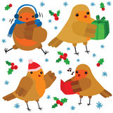Cool Christmas Robin Characters Royalty Free Stock Photos