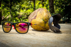 Cool coconut. An abstact funky look to a coconut chilling in the sun stock photography