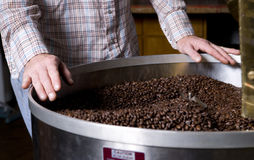 Master Roaster Cooling the Coffee Beans Stock Photography