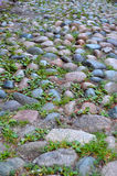 Cool colored Cobblestone Background. Cool colored cobblestone/pebble path background. rocks laid in a pattern, grass and weeds grow in between Royalty Free Stock Photos