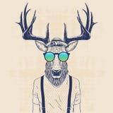 Cool deer. Illustration of deer dressed up like cool hipster vector illustration