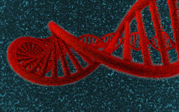 DNA in red - #2 Royalty Free Stock Photo