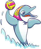 Cool dolphin playing water polo. Cool athletic dolphin wearing a colorful cap, smiling and keeping balance out of the water thanks to the power of its tail while Stock Photo