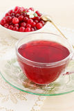 Cool drink cranberry Royalty Free Stock Images