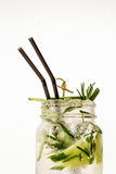 A cool drink of Mojito on the table. White backdround stock photos