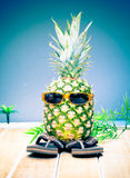 Cool dude pineapple. Comical character of a cool dude pineapple in his trendy sunglasses and slip slops out enjoying the tropical sunshine Stock Image
