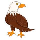 Cool Eagle cartoon stock illustration