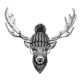 Cool fashionable deer Hipster animal Vintage style illustration for tattoo, logo, emblem, badge design. Cool fashionable deer Vintage style picture for tattoo Stock Photos