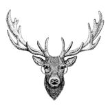 Cool fashionable deer Hipster animal Vintage style illustration for tattoo, logo, emblem, badge design. Cool fashionable deer Vintage style picture for tattoo Stock Photo