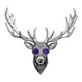 Cool fashionable deer Hipster animal Vintage style illustration for tattoo, logo, emblem, badge design Stock Photos