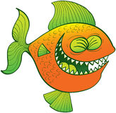 Cool fish laughing. Funny orange fish with green fins and sharp teeth while clenching its eyes and laughing enthusiastically Royalty Free Stock Photo