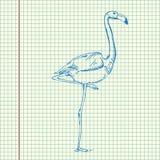 Cool flamingo design Royalty Free Stock Photography