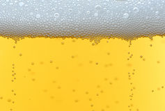 Cool fresh beer bubbles Stock Photography