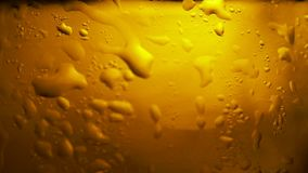 Cool fresh beer with condensation drops. Beer in glass stock video footage