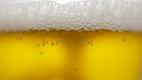 Cool fresh beer with condensation drops. Beer in glass stock video