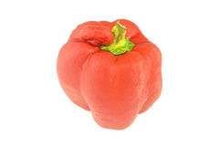 Cool and fresh red bell pepper isolated Royalty Free Stock Image