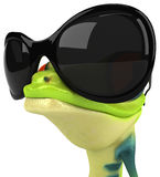 Cool frog Royalty Free Stock Image