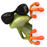 Cool frog Stock Image