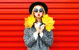 Cool girl autumn portrait in coat holds yellow maple leaves Royalty Free Stock Photos