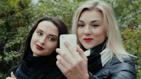 Cool girls make self. HD stock video