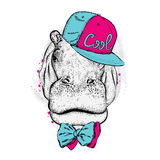 Cool hippo wearing a cap and sunglasses. Print on clothes. Fashion & Style. Stock Photo