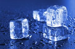Cool ice cubes Stock Photography
