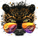 Cool jaguar T-shirt graphics. jaguar illustration with splash watercolor textured  background. unusual illustration watercolor jag. Cool jaguar T-shirt graphics Royalty Free Stock Photography