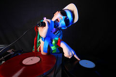 Cool kid DJ Royalty Free Stock Images