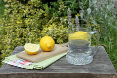 Cool lemonade and lemons Royalty Free Stock Images