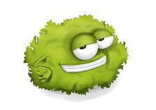 Cool lettuce Royalty Free Stock Image