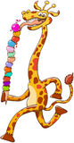 Cool long-necked giraffe eating a giant ice cream composed of thirteen flavor balls. Cool giraffe with long neck and big smile while striding and eating Stock Images