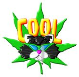 Cool Marijuana Gonzo Kitty Royalty Free Stock Photography