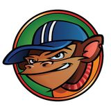 Cool monkey with cap. Inside a circle Royalty Free Stock Photos