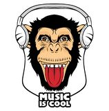 Cool Monkey. stock illustration