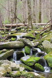 Cool Mountain Stream Royalty Free Stock Images