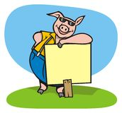 Cool pig with a sign. A cool pig with a sign ready to pass your message Royalty Free Stock Photo