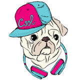 Cool Pug with a cap and headphones. Print on clothes or a postcard. Hipster. Royalty Free Stock Images