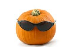 Cool pumpkin Stock Photography