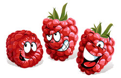 Cool raspberry cartoon Royalty Free Stock Photography