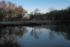 Sunrise on a spring morning. Cool reflection dawn lake pond blue sky woodland countryside Flitwick moor Flitton calm serene serenity trees leaves Bedfordshire stock image