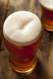 Cool Refreshing Dark Amber Beer Royalty Free Stock Photography