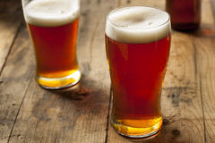 Cool Refreshing Dark Amber Beer royalty free stock images