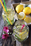 Cool refreshing drink: ice, lemon and mint Stock Image