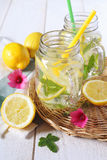 Cool refreshing drink: pure water, lemon and mint Royalty Free Stock Images