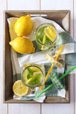 Cool refreshing drink: water, lemon and mint Stock Image