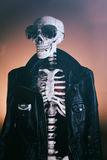 Cool Skeleton Smooth stock photography