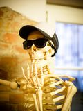 Cool spooky skeleton model wearing sunglasses royalty free stock photography