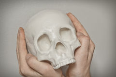 Cool Skull Stock Images