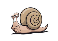 Cool Snail Stock Images